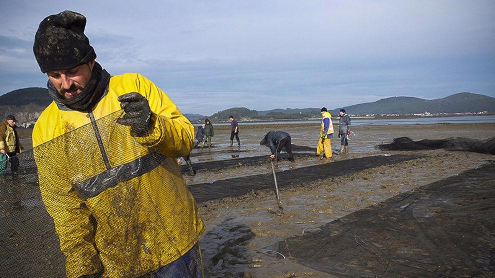 Convocados 60.000 euros de ayudas a cooperativas y asociaciones de pesca y marisqueo
