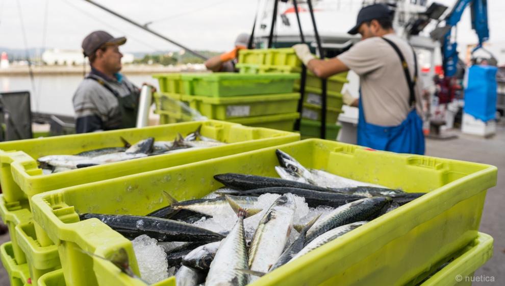 Cantabria destina 3 millones en ayudas a inversiones de empresas pesqueras