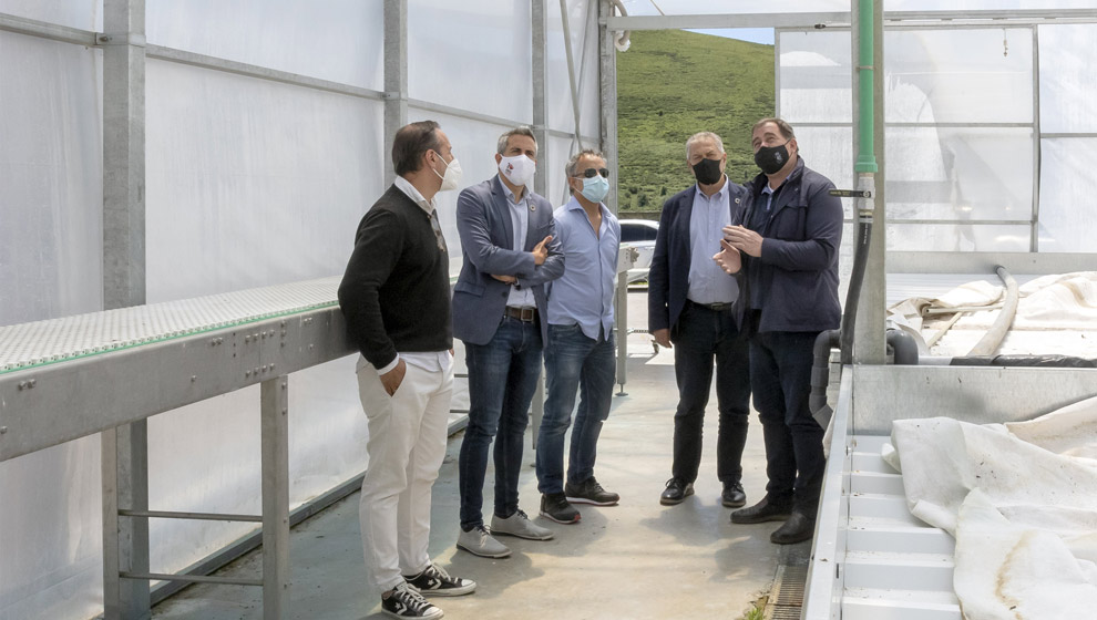 Zuloaga destaca el proyecto empresarial para reactivar los invernaderos municipales