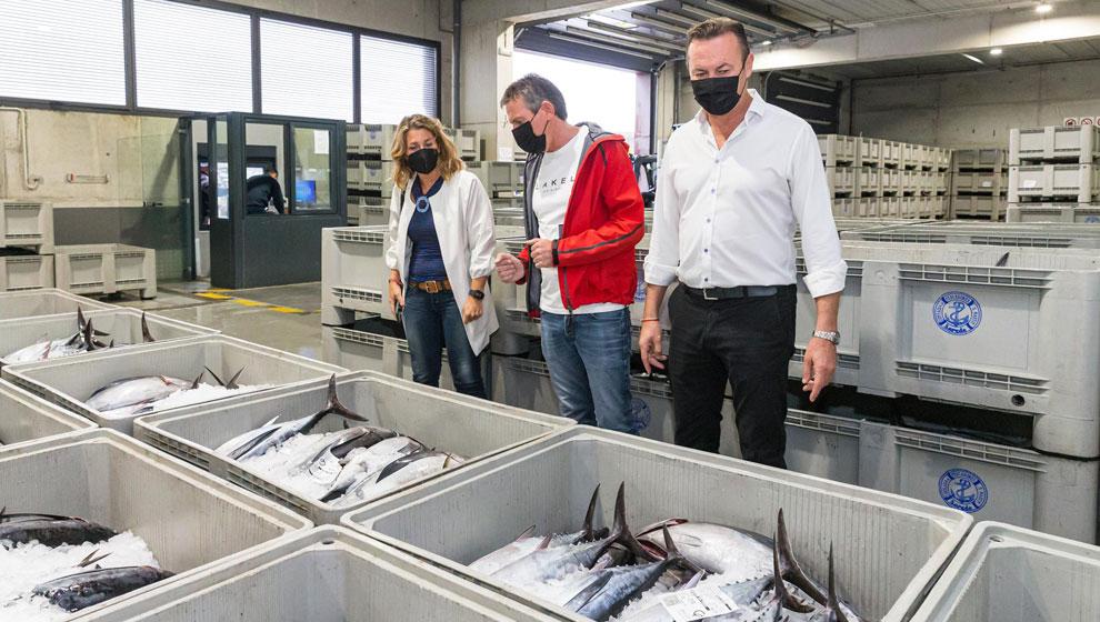 """Descargados en el puerto de Laredo 58.000 kilos de bonito que se ha vendido a precios """"razonables"""""""